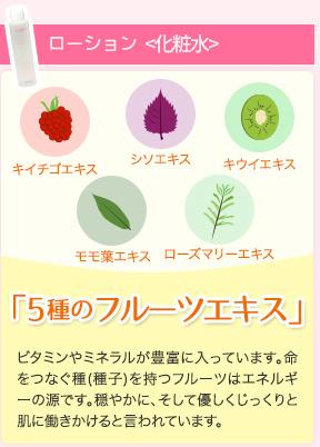 「5種のフルーツエキス」キイチゴエキス シソエキス キウイエキス モモ菜エキス ローズマリーエキス ビタミンやミネラルが豊富に入っています。命をつなぐ種(種子)を持つフルーツはエネルギーの源です。穏やかに、そして優しくじっくりと肌に働きかけると言われています。