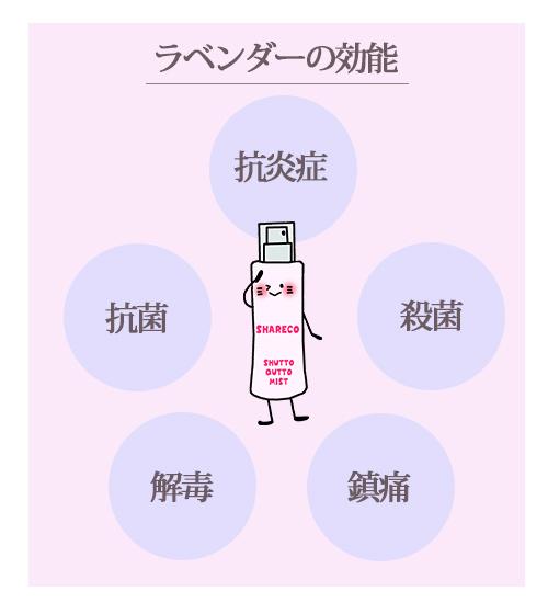 【ラベンダーの効能】抗炎症・抗菌・殺菌・解毒・鎮痛
