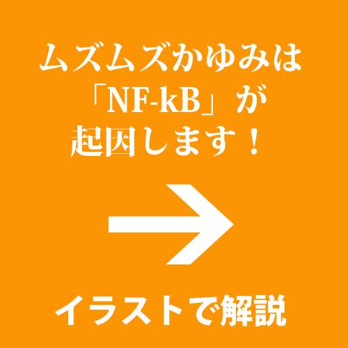 a_NFkB000