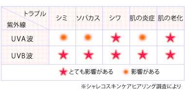 紫外線のA波とB波が皮膚に与える影響一覧