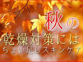 秋のスキンケア